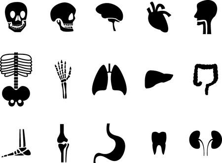 viscera: Set of viscera black icon