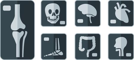 roentgen: Set of X-rays flat icon