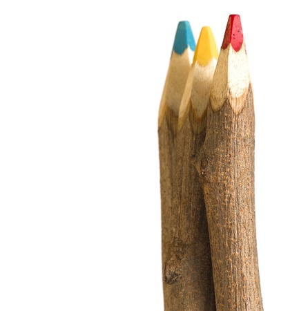 tree giant handmade color pencil, assorted colors and rustic wood