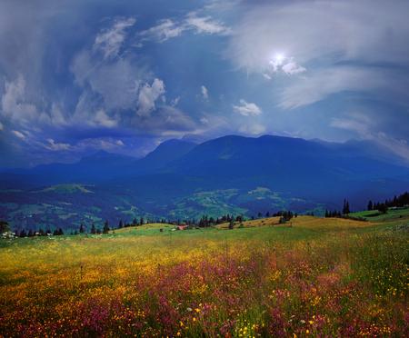 カルパティア夏花、澄んだ湖の豊富な年の暖かいと美しい時間です、草、新鮮な空気の高山牧草地緑豊かな都市からの人々 を引き付ける 写真素材