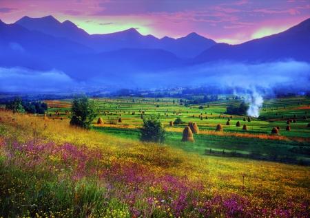 カルパティア夏は暖かいと美しい時期、多量の花、澄んだ湖、緑豊かな高山草原草、新鮮な空気の都市からの人々 を引き付ける 写真素材