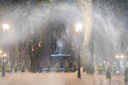 Severe weather in Kiev citizens favorite park, twilight hid fog and snowfall old trees, fall asleep benches, lights shine through the mist, cold and damp, a strong wind blows snowflakes quickly through the branches photo