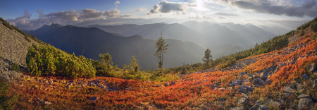 unusually: highland vegetation modest summer and unusually beautiful colors blooms in autumn, before cold weather. Blueberries bright red, coniferous forest green, orange buk- mountains sinie- fantastic charm. Stock Photo