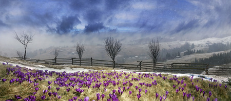 In March-April after a winter in the mountains of unstable weather photo