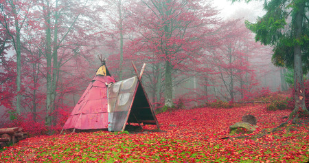 Indian tepee in autumn forest built hippie flower children for outdoor life in an old beech forest. Inside the fire burning and the possibility of sleeping people - as in the classic lodge