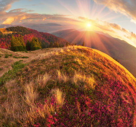 In the Carpathians, golden autumn cold often turns into snow, and then again come warm sunny days. Against the background of high mountain ranges and beautiful beech forests scenic Stock Photo
