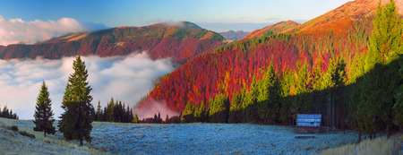fall winter: In the Carpathians, golden autumn cold often turns into snow, and then again come warm sunny days. Against the background of high mountain ranges and beautiful beech forests scenic Stock Photo
