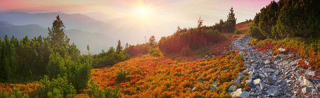 Paints fantastic fall in the Carpathian Mountains. In Gorgany, Mount Igrovets- in September leaves berries and grass shimmering rainbow colors on the background of wild peaks Osmoloda and Old Guty