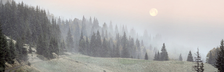 ice storm: Ice storm hid autumnal forest, snowstorm discolor forests and mountains, fields and road blizzard covers - cold winter starts in the Ukrainian Carpathians earlier than in the flat Ukraine and Europe