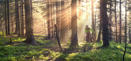 fog rider on a mountain bike overcome challenging tracks in the wild alpine forest at dawn on a background of the sun during the Ukrainian Carpathian marathon for off-road trails in the Carpathians Stockfoto