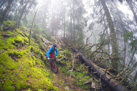 rain mist rider on a mountain bike overcome challenging tracks in the wild alpine forest, among rocks and windbreaks in the Carpathian marathon for off-road trails.  Ukraine, Vorohta