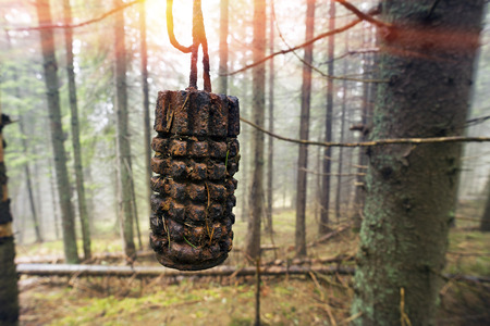 Grenade from the First World War found in the woods near the mountain hamlet. a hundred years ago these places were the Austro-Hungarian battles with Russia, held the defense line