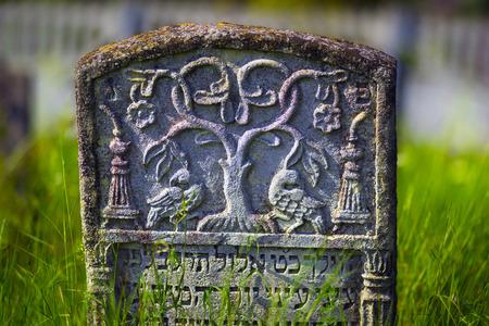 hebrew script: Ukraine, Galich- July 18, 2015: At the Karaite cemetery in the village Zalukva near Galich (Ivano-Frankivsk region, Ukraine) remained around 200 gravestone monuments. The oldest of them dated from the mid-XVIII century.