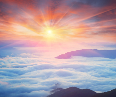 enveloped: At dawn, after a warm rain ridges Chornogory haze enveloped with rays of sunshine. Sea fog in the pink light is very beautiful and fabulous, picturesque vague wave rolled on the slopes of the peaks Stock Photo