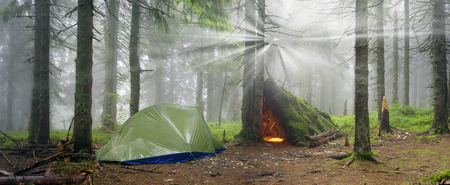 Rainy autumn landscape spruce forest in the rain at dawn with a tent. Modern tent & Rainy Autumn Landscape Spruce Forest In The Rain At Dawn With ...