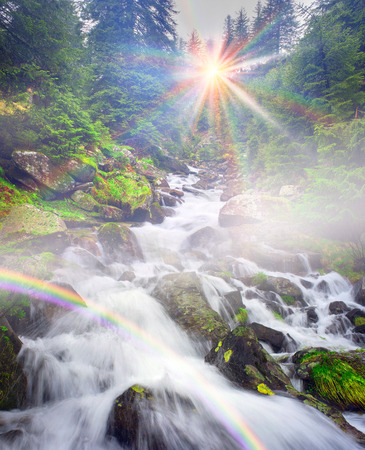 River at sunrise in the Carpathian forest - fast jet of water at slow shutter speeds give a beautiful fairy-tale effect. Ukraine is rich in water resources, in the Carpathian Mountains is legendary good ecology Stock Photo
