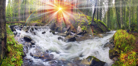 River at sunrise in the Carpathian forest - fast jet of water at slow shutter speeds give a beautiful fairy-tale effect. Ukraine is rich in water resources, in the Carpathian Mountains is legendary good ecology Imagens