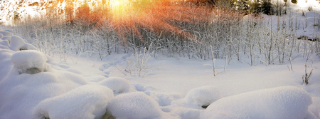 christmas grounds: Alpine snow crystals after a severe weather threatening and frightening frost all life in the Carpathian Mountains, Ukraine. Beautiful shiny snowflakes at sunrise, whimsical picturesque patterns