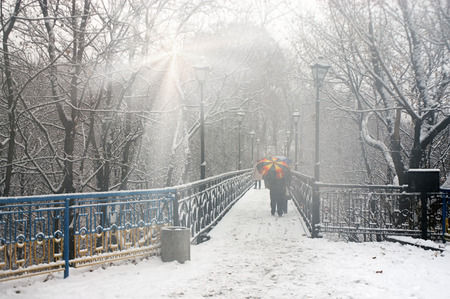 tempest: In the Ukrainian capital, a large space is occupied by parks and forests and groves, in which like walking women with children, lovers, young people, older people-grandparents and walk their dogs, pets