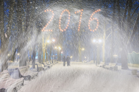 severe weather: Severe weather in Kiev citizens favorite park, twilight hid fog and snowfall old trees, fall asleep benches, lights shine through the mist, cold and damp, a strong wind blows snowflakes quickly through the branches