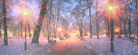 inclement: Mariinsky garden during inclement weather has its charm and Sharm glow lamps, soft snow- winding paths and roads - is a favorite place of citizens of the Ukrainian capital at all times of the year and the season