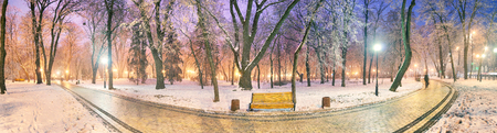 Mariinsky garden during inclement weather has its charm and Sharm glow lamps, soft snow- winding paths and roads - is a favorite place of citizens of the Ukrainian capital at all times of the year and the season