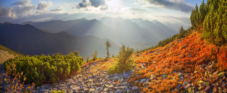 modest: highland vegetation modest summer and unusually beautiful colors blooms in autumn, before cold weather. Blueberries bright red, coniferous forest green, orange buk- mountains sinie- fantastic charm. Stock Photo