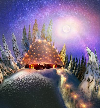 illuminate: Climbing to tourist wild alpine mountain to an abandoned cabin-in order to illuminate the snow-covered spruce canopy during sunrise, sunset  to see show the first star of Christmas in the Carpathians