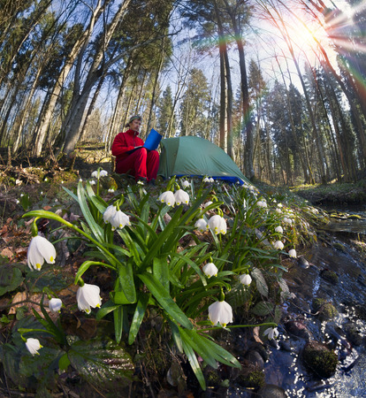 In the spring the snow melts there are first rare beautiful flowers primroses snowdrops near swamps streams in the lowlands in the shade of trees bushes. graceful bells primroses