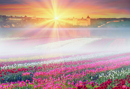 Spring, summer, turning into a very beautiful time of year, when they begin to blossom on the background of bright colors in sunrises and sunsets. Manufacturers calendars, artists, photographers appreciate this time