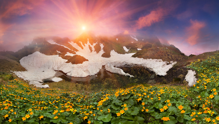 In the spring the snow melts in the Carpathians flowers bloom luxuriantly. This time, spring break-favorite for alpine trips in the Carpathians, Ukraine. Marmarosh-its slopes similar to the Caucasus.