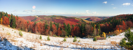 Cold autumn in Precarpathians. Bright colors after snow blizzard is very beautiful scenic, beech, birch and pine forests on the slopes of Gorgan background mountains at dawn sunset