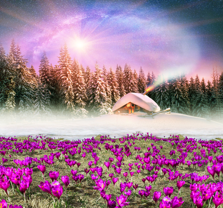 Fantastic landscape, symbolizing the unity of the spring and winter, on the fairy tale
