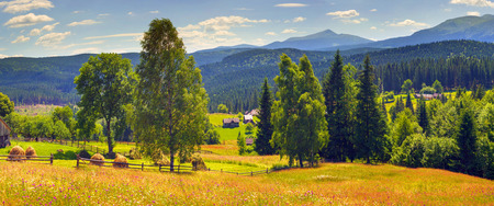 Farmhouse in the Carpathians, as the village in the Alps, Tatras, situated in a picturesque location on the river, where the warm morning rises fog, shrouding buildings, blooming field Stock Photo