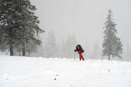 Tourist through a violent storm in the Carpathians is moving toward the goal. In the alpine zone of strong winds and snow impairs visibility and creates problems with orientation