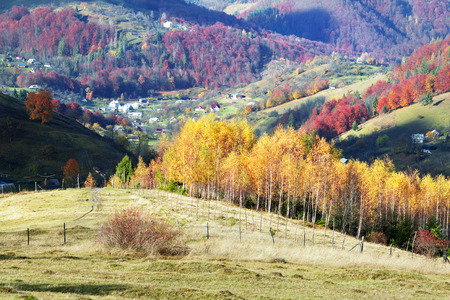 Cold autumn in Carpathian village. Bright colors after a snowfall blizzard is very beautiful scenic, beech, birch and pine forests and Hutsul houses on background ridge slopes Sokilsky Stock Photo
