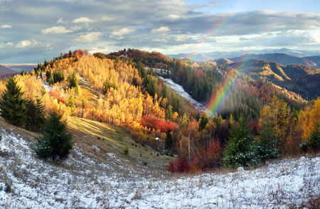 aspen leaf: Cold autumn in the Carpathians. Bright colors after snow blizzard is very beautiful scenic, beech, birch and pine forests on the slopes of Sokilsky background mountains at dawn  sunset Stock Photo