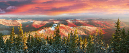 very cold: Cold autumn in Precarpathians. Bright colors after snow blizzard is very beautiful scenic, beech, birch and pine forests on the slopes of Gorgan background mountains at dawn sunset