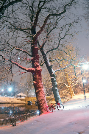 winter tires: Powerful snow storm cyclone swept Europe Photo Carbon mountain bike and helmet skiing on fresh clean snow in the city park on a background of old trees and lanterns glowing shine  Stock Photo