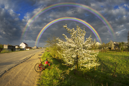 crab apple tree: A tender evening in apple-tree pear trees, Ukraine. Bike tour before the beginning of a storm on the European villages. Clouds over the picturesque area gather before the storm Stock Photo