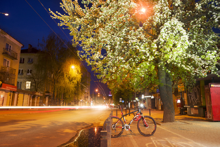 crab apple tree: Ukraine, Ivano-Frankivsk, May 14, 2017: tender evening in apple-tree pear trees, Ukraine. Bike tour along the cycle path against the backdrop of the night city. Clouds over the picturesque area Editorial
