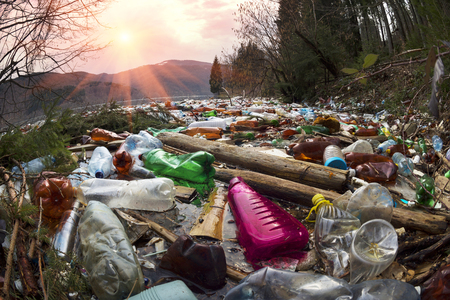 poor culture of consumption to achieve the progress of modern civilization gives a negative impact on the surrounding nature. Ecological catastrophe in the background of Carpathians