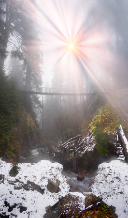 carpathians: Spring in the Ukrainian Carpathians against the backdrop of wild snow tops frosted spruces there is a wooden bridge across the river in the misty coniferous forest of the ski resort of Dragobrat