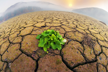 dry land of the reservoir in the Carpathian Mountains ecological desert symbolizes human life in the world of industrial revolution in countries with a low level of culture of behavior in nature Foto de archivo