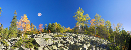 morning shooting of the rocky slope of Mount Syvula Gambler with autumn birches and coniferous forest on the background. Placer stones on a steep rocky slope survive birch water