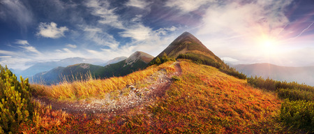 In the Ukrainian Carpathians, the wildest area is the burial mounds, the highest peak of Syvula. In autumn, red leaves of blueberries and cowberries adorn the mountain alpine landscape 写真素材