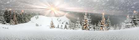 Ukrainian Carpathians snowy forest in the afternoon, and at sunrise and sunset is beautiful and attractive. Slender fir and lush beech shackled by frost and rime, the sun's rays create beauty