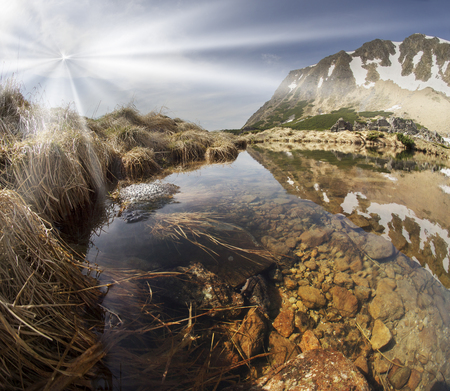 In the Ukrainian Carpathians among alpine meadows at a high altitude lake Berbeneskul Montenegro is located where the end of May the snow melts and frogs toads breed in the icy cold water