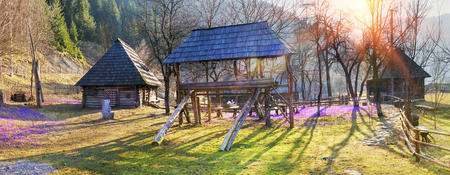 Ukraine, Transcarpathia - the ancient town Kolochava - Ethnographic Museum Old Village in the traditional style of the famous Carpathian that fantastically decorated with beautiful flowers primroses - crocus, saffron