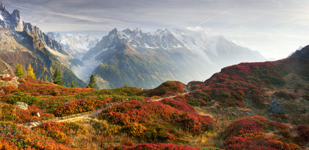 Mont Blanc Chamonix autumn - picturesque meadows of highland berry bushes are fantastically beautiful after the first frosts against the background of the steep peaks of the Alps. Reklamní fotografie